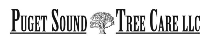 Puget Sound Tree Care